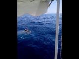 плаванье в открытом море:-)