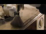 Криминалистическая лаборатория 4  Отпечатки пальцев